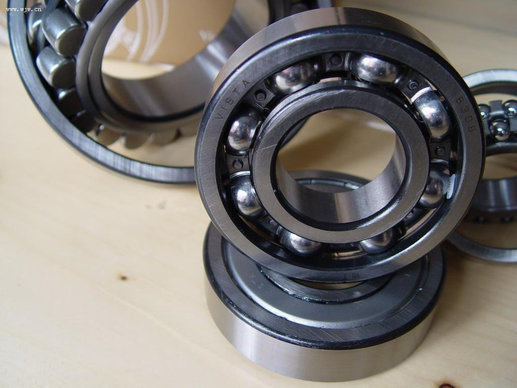 NJ 304 ECP Open Single-Row Cylindrical Roller Bearing 20*52*15mm