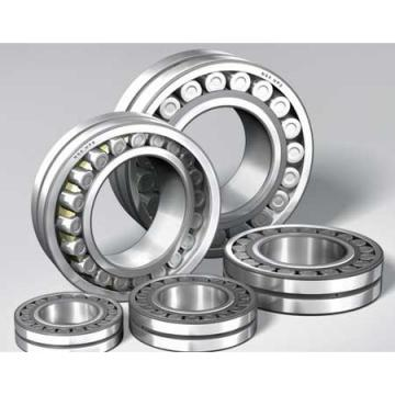NUP 317 ECP/ M Open Single-Row Cylindrical Roller Bearing 85*180*41mm
